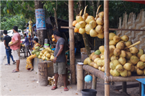 Kala Patthar Beach Market Haveloc Island Andaman Holiday Package  , Neil Island Holiday Packages