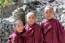 The Disciples _  , Best Of Ladakh Tour With Pangong Lake Leh Monasteries Nubra Valley Sham Valley