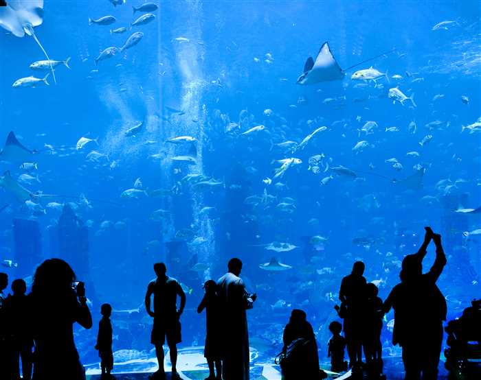 Lost Chamber, Atlantis - top attractions and places to visit in Dubai