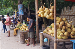 Kala Patthar Beach Market Haveloc Island Andaman Holiday Package ,