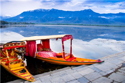 Shikara Dal Lake Kashmir Copy ,
