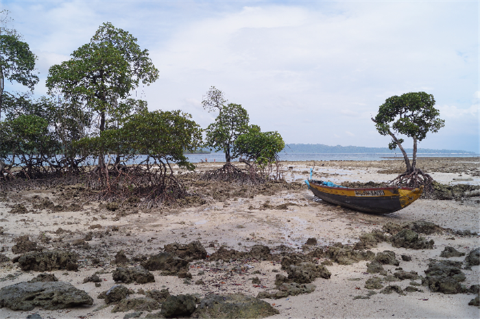 Boat Beach Radhanagar Havelock Andaman Holiday , Amazing Andaman Holiday - Port Blair & Havelock Island