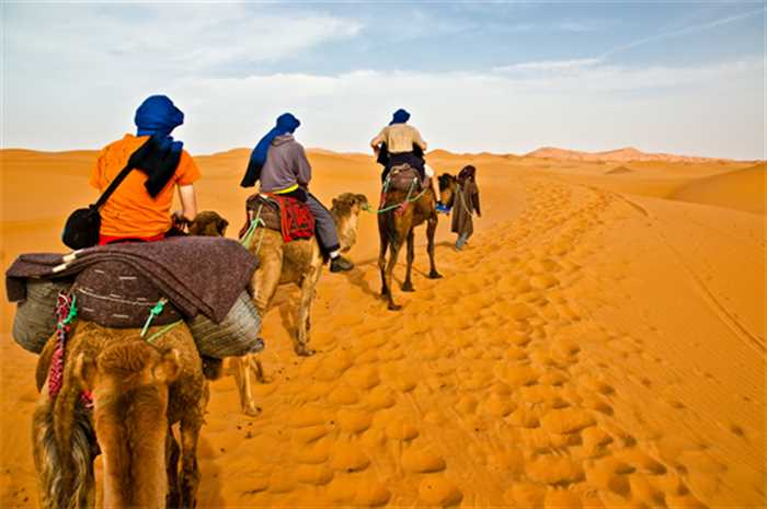 Desert Safari Camel Dubai Holiday , Best Of Switzerland And Dubai